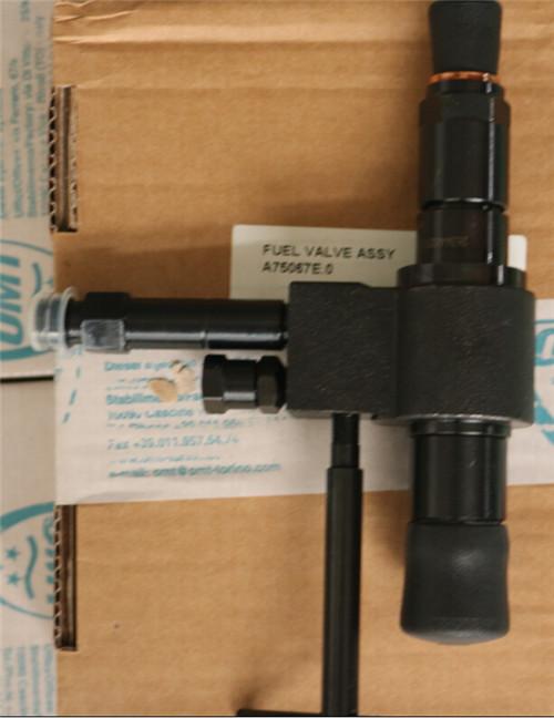 原装OMT燃料喷射器 燃油阀组件A75067E.0